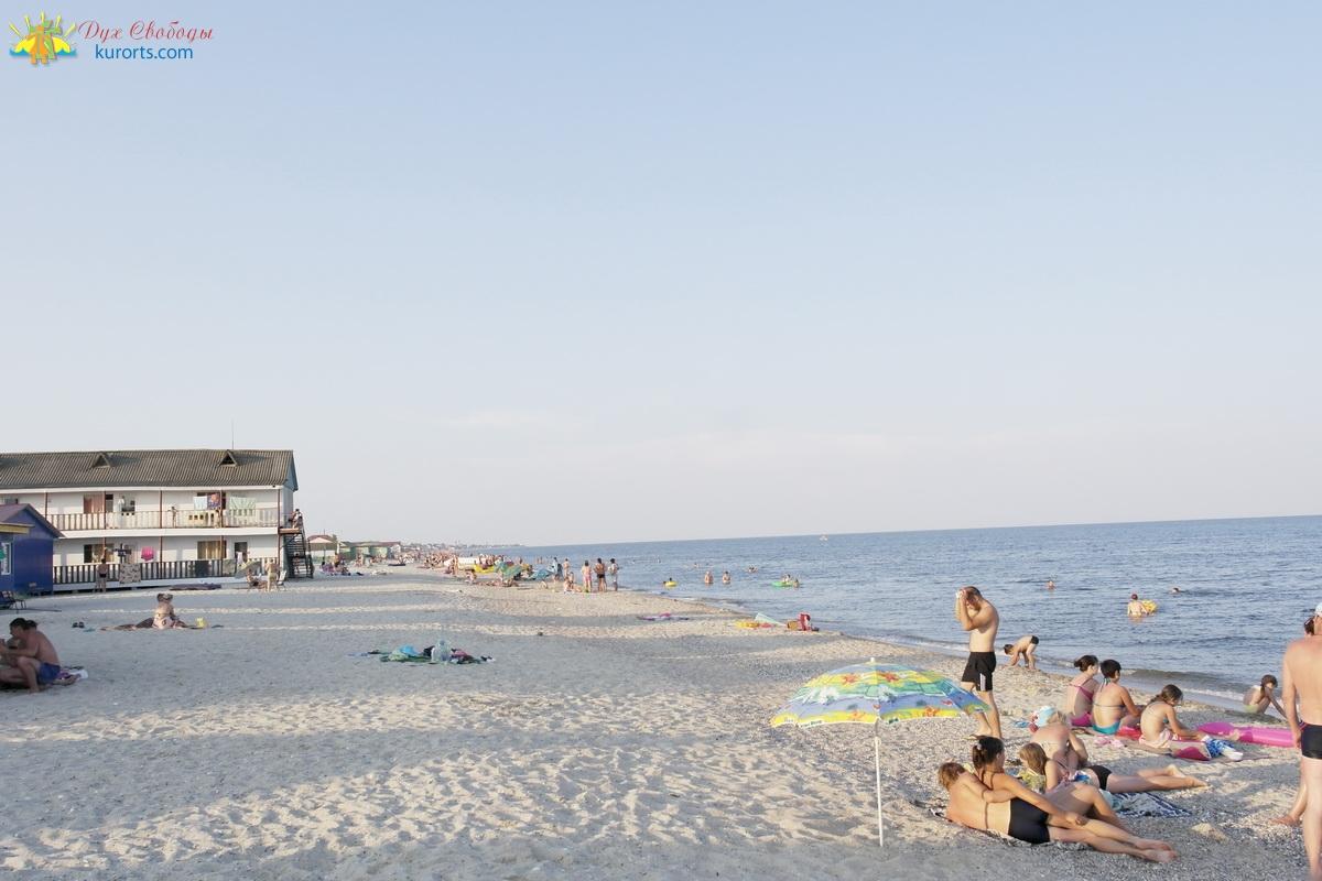 Будакская коса Затока пляж Незабудка 2 фото