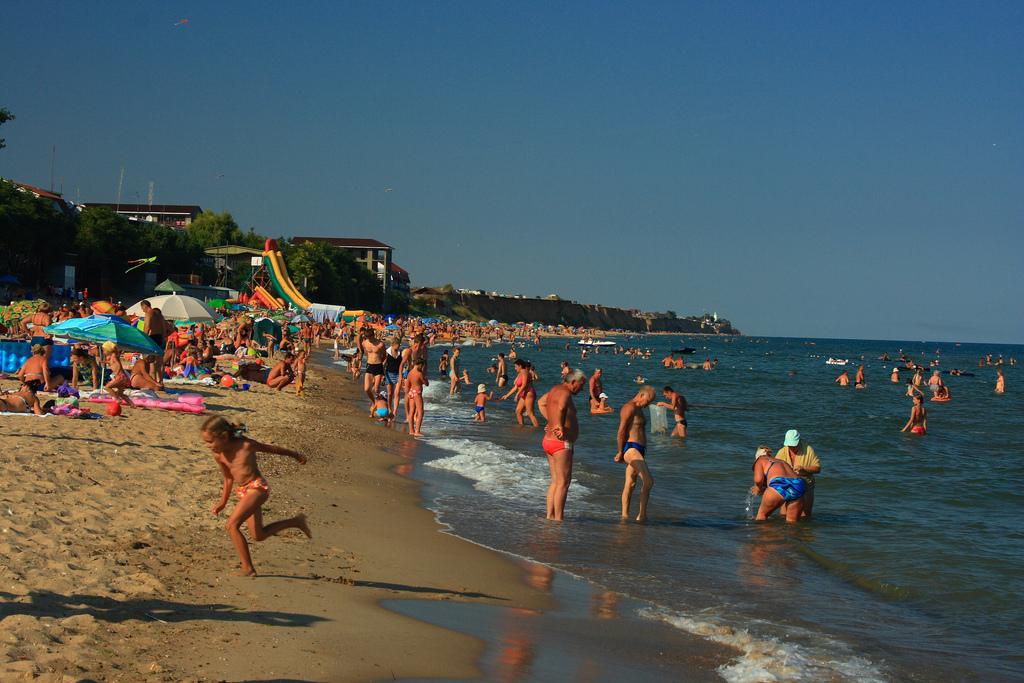 Грибовка пляж